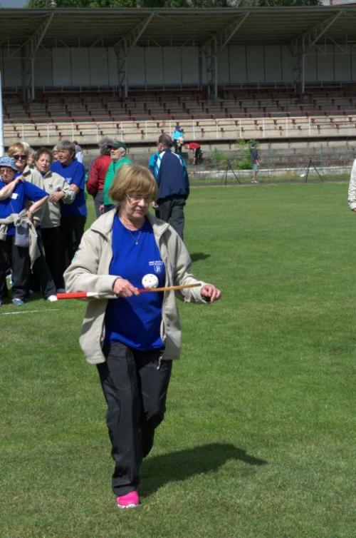 Sportovní hry 2017 - Litvínov